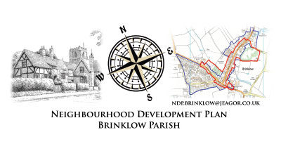 Neighbourhood Plan Questionnaire