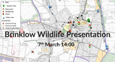 Brinklow Wildlife Presentation