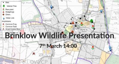 Brinklow Wildlife Presentation